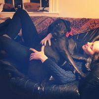 house sitter Lana