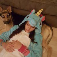Bernadette's dog day care
