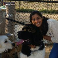 Niveditha's dog boarding