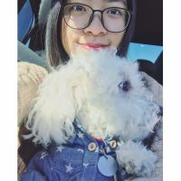 pet sitter Shuyi