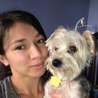 Natalia's dog day care