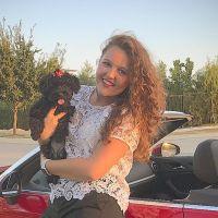 Aislin's dog day care