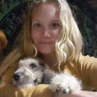 Kallin's dog day care