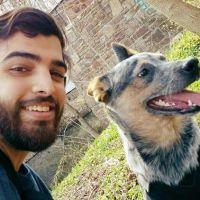 Alexander's dog boarding