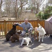 Pablo's dog day care