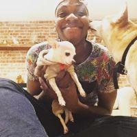 Deontez's dog day care