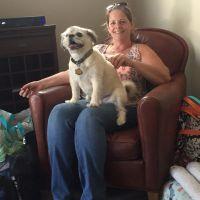 Leeann's dog day care