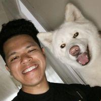 Halim's dog day care