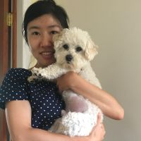 Vivian's dog day care