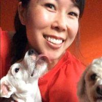 Madi's dog day care