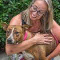 Lost Corner Canine Camp dog boarding & pet sitting