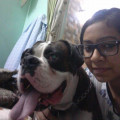 Ramneet's Love For Dogs dog boarding & pet sitting