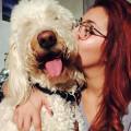 Pine + Pet Lovers dog boarding & pet sitting