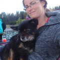 Highwood Extended Paws, Boarding... dog boarding & pet sitting