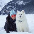 Gigi's Byron Pet Retreat dog boarding & pet sitting