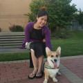 Paws For Life Arlington dog boarding & pet sitting