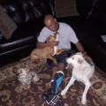 Hurst doggie care & obedience train dog boarding & pet sitting