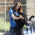 Kayla's Pawtastic Resort dog boarding & pet sitting