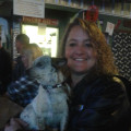 Gina's Safe Haven Dog Motel dog boarding & pet sitting