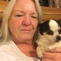 Connie's Sweet Lula Land Boarding dog boarding & pet sitting