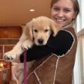 Becky's Dog Care! dog boarding & pet sitting