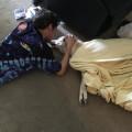 PPL: Professional Pet Love dog boarding & pet sitting