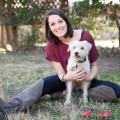 Arlington-Cozy Pup Resort! dog boarding & pet sitting