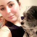 Alexandra's Doggy B&B dog boarding & pet sitting