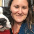 Lydias Hamilton Heights Snuggle Bar dog boarding & pet sitting