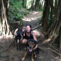 Oahu Dog Nanny dog boarding & pet sitting