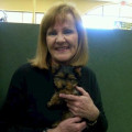 Kathy's Lakeway Vacay dog boarding & pet sitting