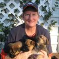 K9 Karma Casa dog boarding & pet sitting