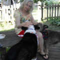 Grace's Reliable Canine Care dog boarding & pet sitting