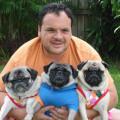 Nothin' But Pugs! dog boarding & pet sitting