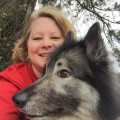 Robyn's Pack Pet Services of PCB dog boarding & pet sitting