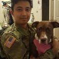 Fort Meade's Pet Sitter dog boarding & pet sitting
