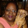Rub My Belly Dog Care dog boarding & pet sitting