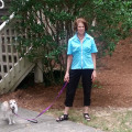 Active Empty Nester in Loving Home dog boarding & pet sitting