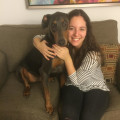 Nicole's Downtown Doggy Vacay dog boarding & pet sitting