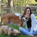 Christina's Pet Care dog boarding & pet sitting