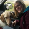 Prodigal Pup Training & Boarding dog boarding & pet sitting