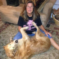 Camden's Yard-Stephanie & Jim dog boarding & pet sitting
