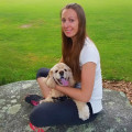 Profesional & Loving Pet Nanny dog boarding & pet sitting