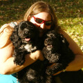 TNT Puppy Services dog boarding & pet sitting