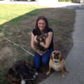 Pet Care By Noelle dog boarding & pet sitting