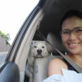 Naomi's Pet Boarding and Care dog boarding & pet sitting