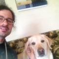 Diamond Dogs in Ballard dog boarding & pet sitting