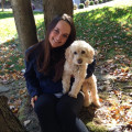 Weekend tail wags in Chelsea! dog boarding & pet sitting