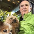 Barry's Doggy Daycare dog boarding & pet sitting
