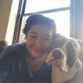 Downtown happy tail dog boarding & pet sitting